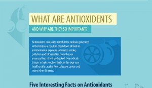 10 Best Sources of Antioxidents in Food