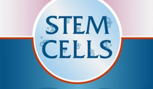 Embryonic Stem Cell Research Pros and Cons