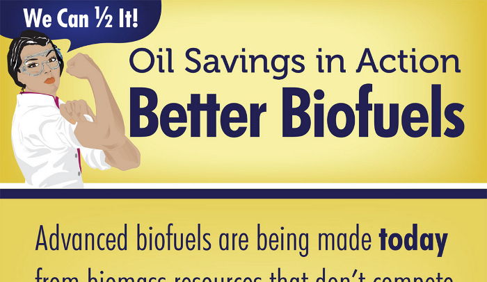 Algae Biofuel Pros and Cons