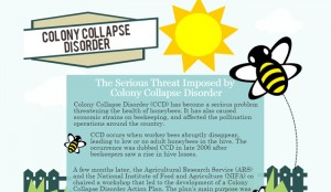 6 Colony Collapse Disorder Statistics