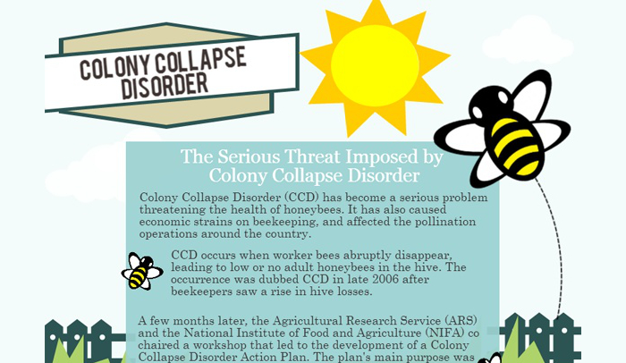 Colony Collapse Disorder Statistics