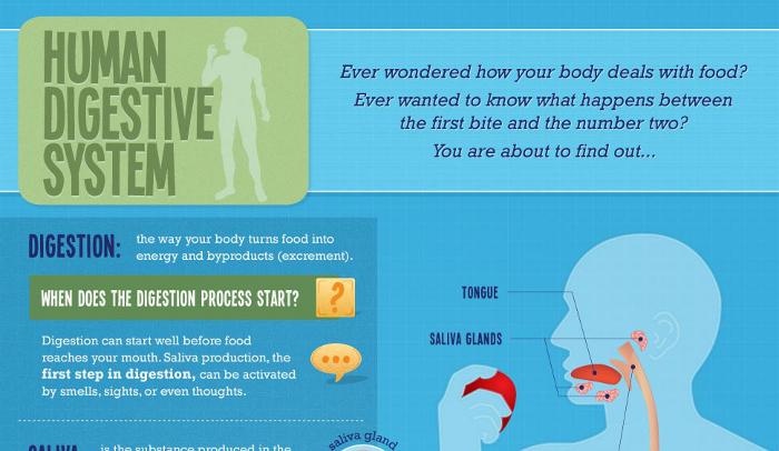 Feeding Tubes Pros And Cons Hrf