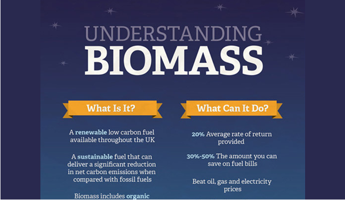 Biomass Pros and Cons