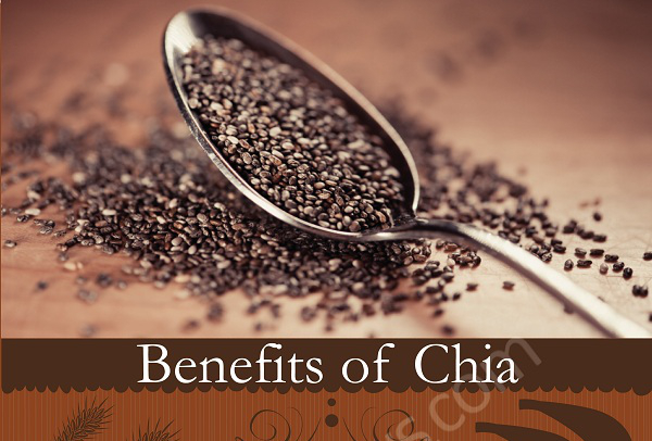 Permalink to Chia Seeds