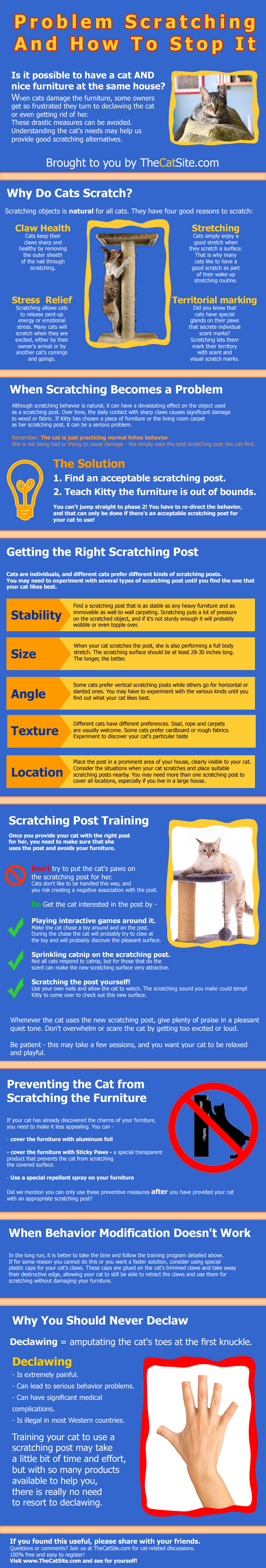 Pros And Cons Of Cats pros and cons of declawing cats | hrfnd