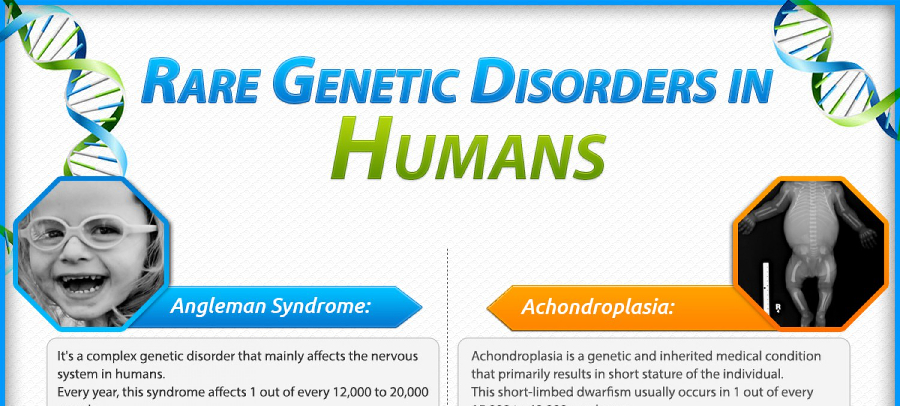 genetic counseling essay Over the past fifty years, the field of genetic counselling has been constantly evolving, often changing the roles and adjusting the values of.