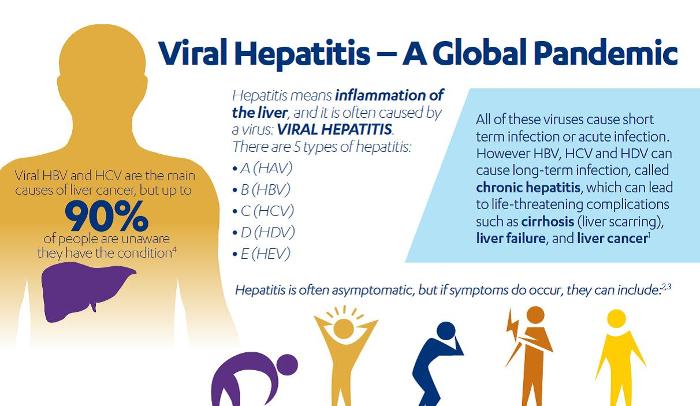 hepatitis a pandemic predicament