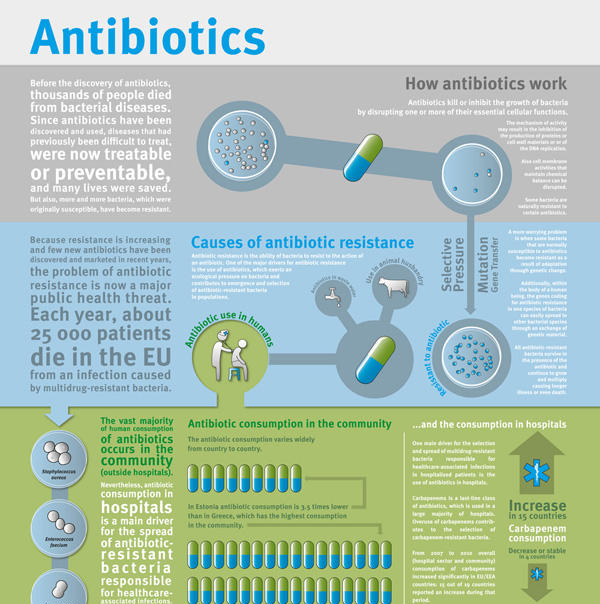 antibiotics discovery In recent decades, the discovery and development of new antibiotics have slowed dramatically as scientific barriers to drug discovery, regulatory challenges, and diminishing returns on investment have led major drug companies to scale back or abandon their antibiotic research.