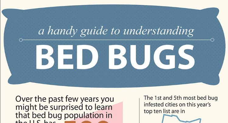 bugs top supplements the home bed remedies treatments herbal five natural for cure
