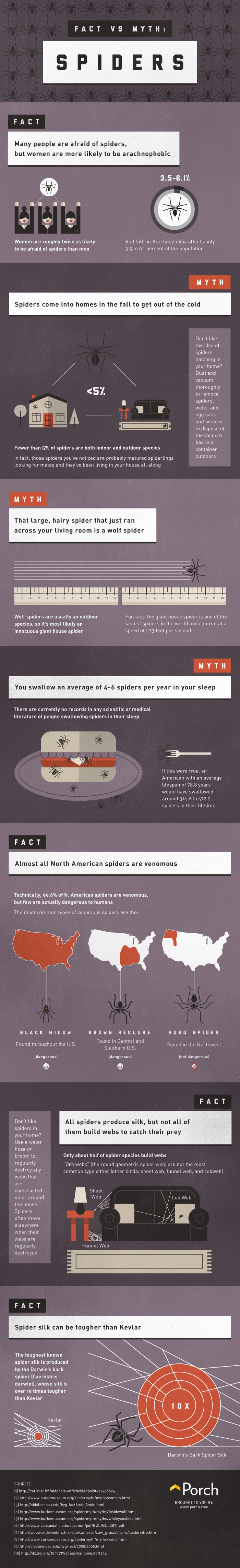 Bed Bug Bites Vs Spider Bites Hrfnd