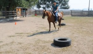 Calories Burned Horseback Riding