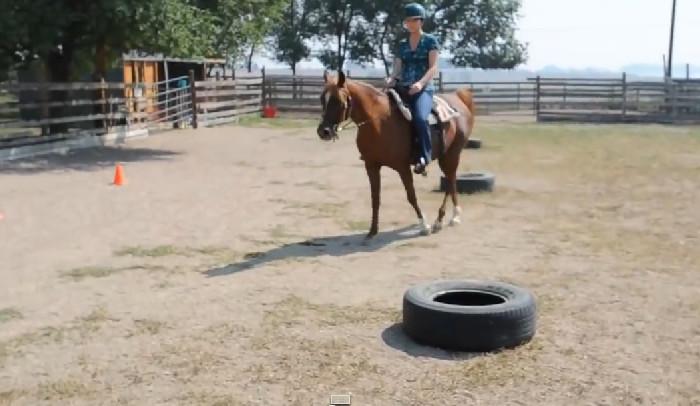 Calories Burned Horseback Riding