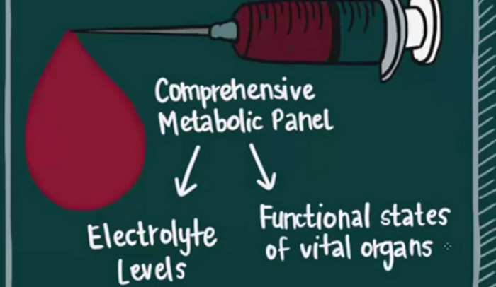 CMP12 Blood Test Results Explained