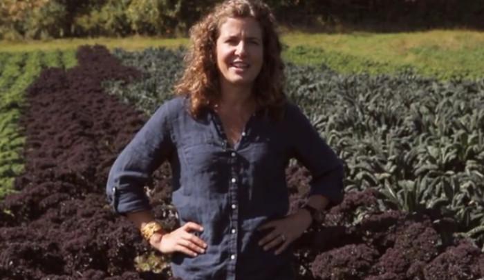 Organic Veggies vs Non Organic Veggies