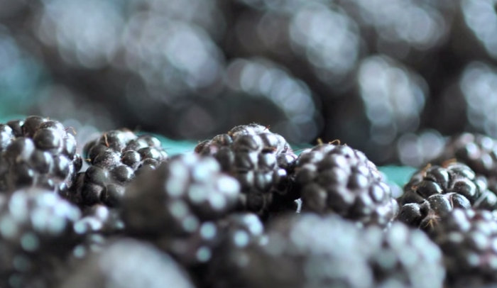 Difference Between Black Raspberries and Blackberries