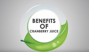 13 Pros and Cons of Cranberry Juice