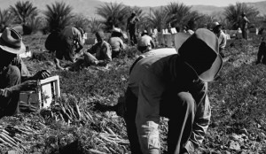 4 Major Accomplishments of Cesar Chavez
