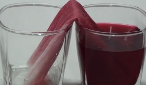 Capillary Action Definition for Kids