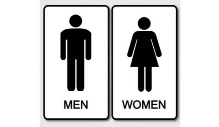 sandra-bems-gender-schema-theory-explained